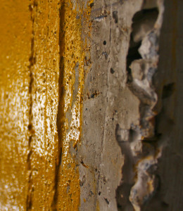 bull-bond_tex-gold_texturized-plastering-bonding-adhesive_constuction